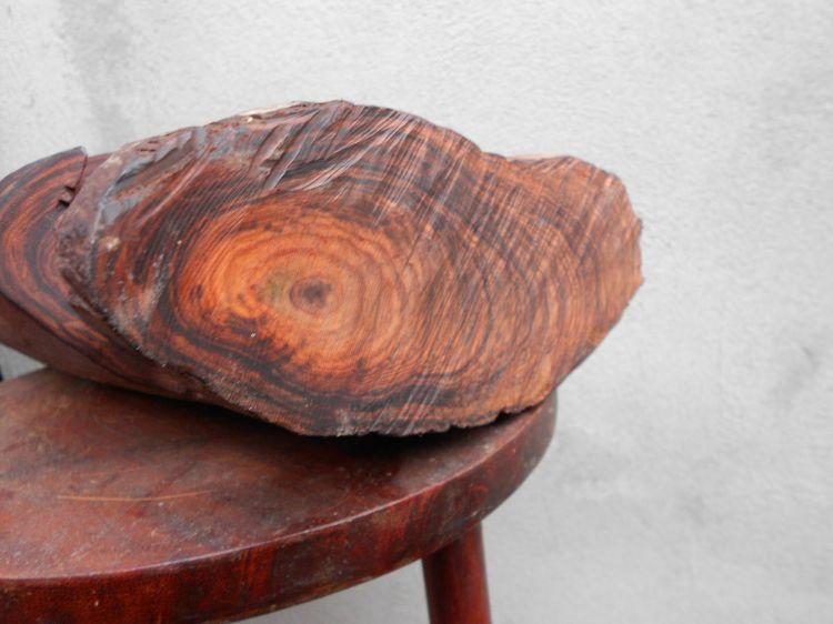 Có những loại gỗ Pơ Mu được ưa chuộng hiện nay 1