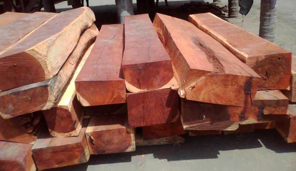 Nguồn gốc và đặc tính của các loại gỗ hương 1