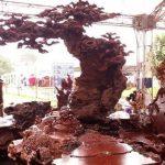 phân biệt gỗ hương thật giả
